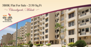 3 BHK Ready to Move Dlats in Mohali - Property in Mohali