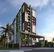 Review of Coevolve Northern Star Bangalore – Coevolvenorthernstar
